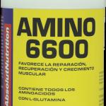 amino 6600